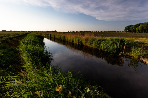 Provincie stimuleert agrarische investeringen in internationale waterdoelen